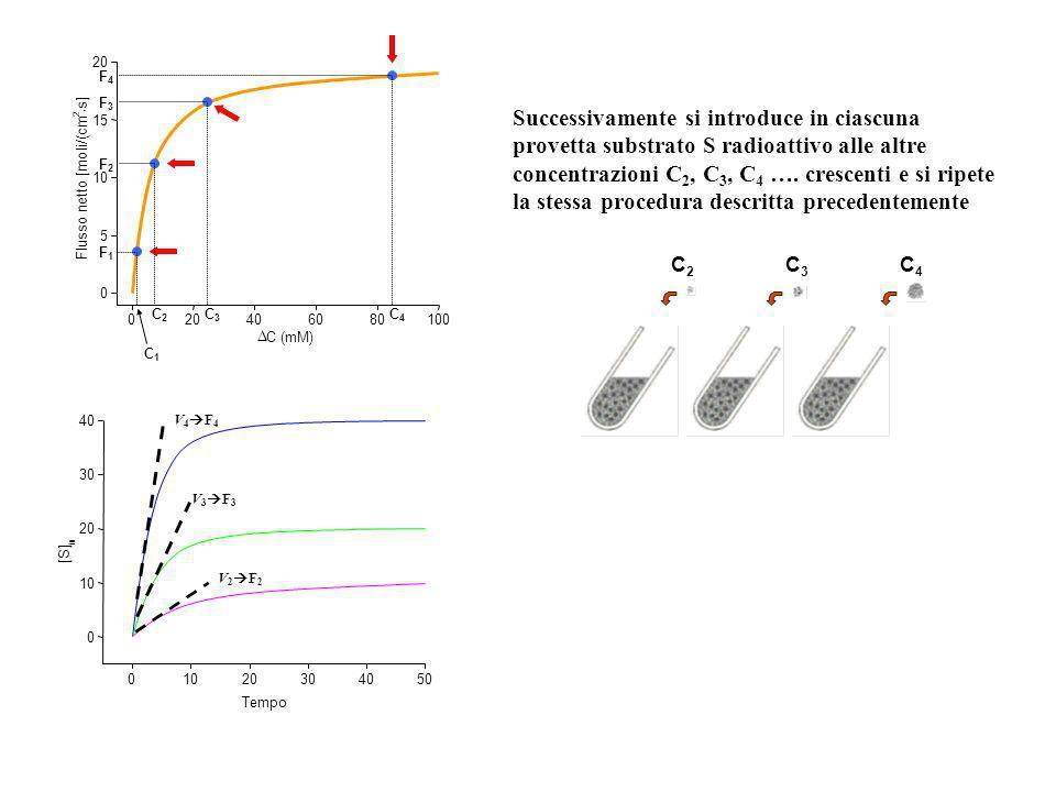 C4 F4. Flusso netto [moli/(cm. 2. × s] D. C (mM) 20. 40. 60. 80. 100. 5. 10. 15. C3.